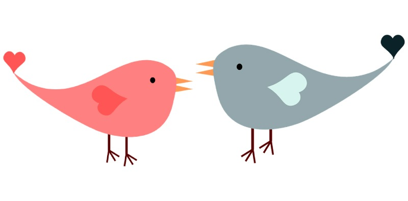 Graphic drawing of two lovebirds facing each other, the smaller one on the left is pink and the larger on the right is gray
